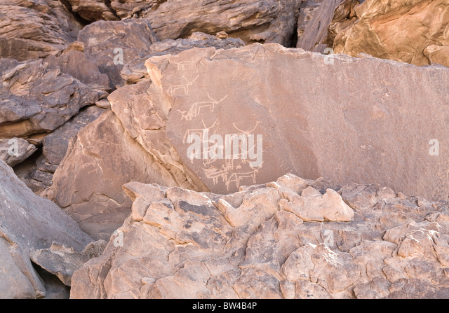 Petroglyphs of various horned animals in The Eastern Desert of Egypt - Stock Image