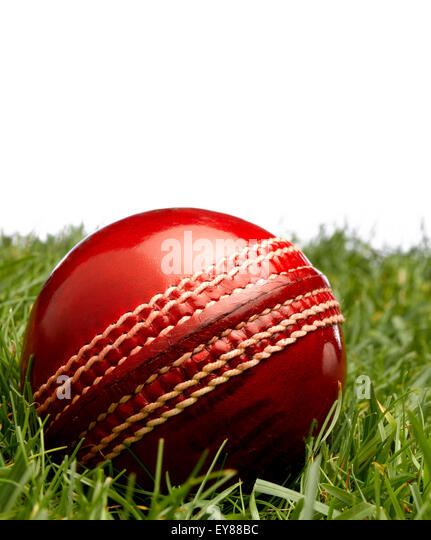 Cricket ball on grass - Stock Image
