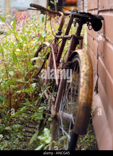 Rusty Bicycle - Stock Image