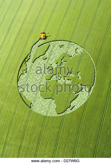 Globe crop circle in green field - Stock Image