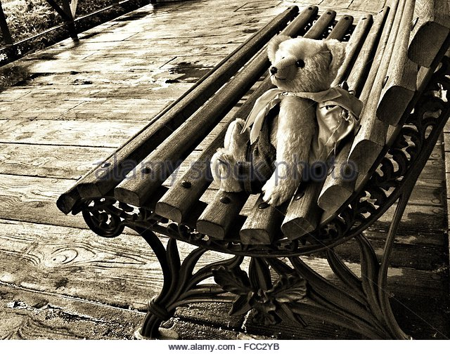 View Of Teddy Bear On Bench - Stock Image