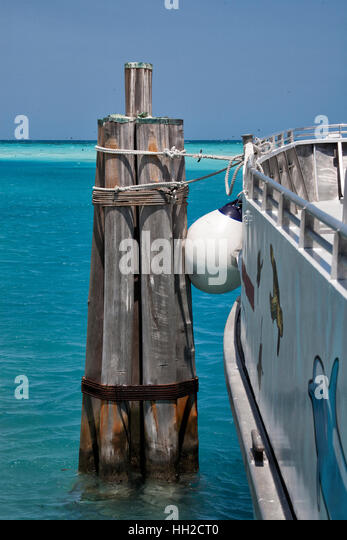 Catamaran Freedom tied up to the slip at Dry Tortugas National Park to begin our day of exploring the historic brick - Stock Image