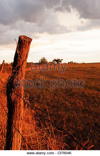 Fence post bathed in evening sun under a stormy sky, Flint Hills, Hamilton, KS., Sept. 10, 2011 - Stock Image