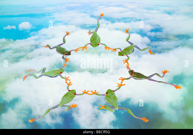 FL6512, Kitchin/Hurst; Circle  Frogs Skydiving - Stock-Bilder