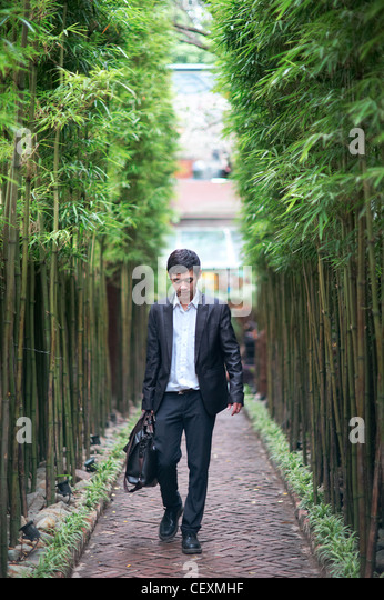 A young businessman standing on a bamboo lined walkway - Stock Image