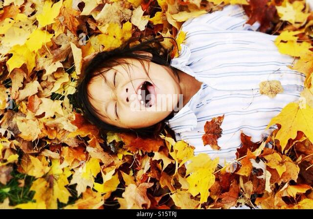 Girl playing in the fall leaves - Stock-Bilder