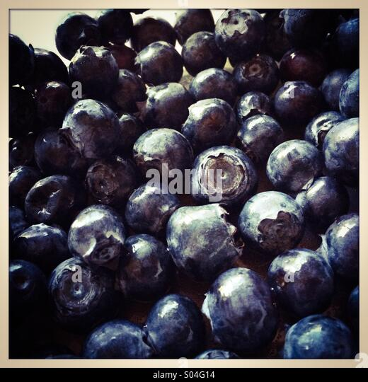 Ripe blueberries - Stock Image