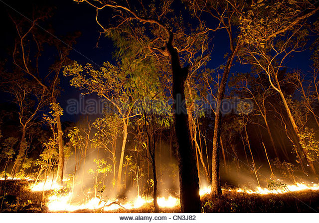 Bush fire, Arnhemland, Northern Territory - Stock Image