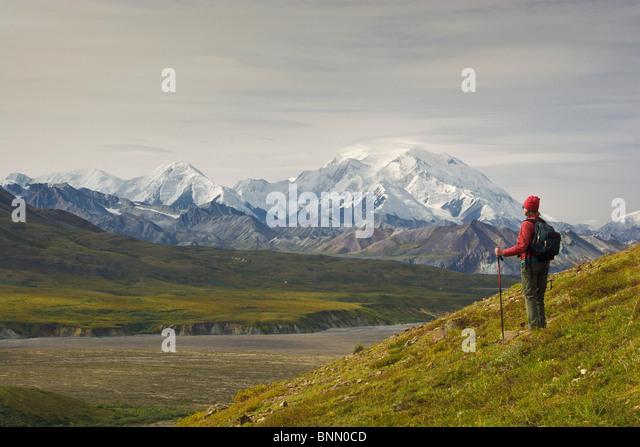 Female hiker views Mt. McKinley in Denali National Park, near Eielson Visitors Center, Alaska, Fall - Stock Image