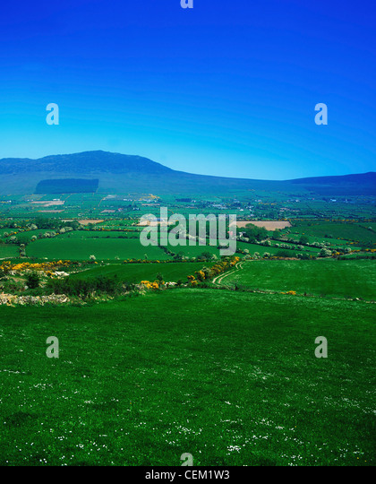 Cooley Peninsula, Co Louth, Ireland - Stock Image
