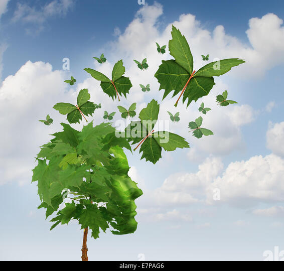 Creative communication and intelligent marketing concept as a tree shaped as a human head with flying leaves turning - Stock Image