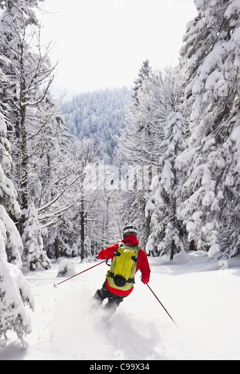 Germany, Bavaria, Young man doing telemark skiing in Herzogstand mountain forest - Stock-Bilder