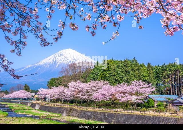 Shizuoka, Japan at Mt. Fuji in spring. - Stock Image
