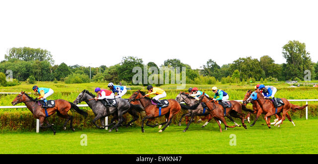The starters in the 'Pferdewetten.de - Grosser Hansa Preis' race come down the home stretch on the Horner - Stock Image