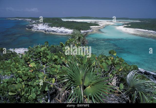 beach coast Long Island nature at Columbus monument overview plants scenery landscape sea seashore Bahama - Stock-Bilder