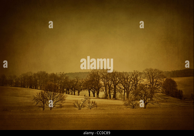 Moody snow scene in Oslo Norway - Stock Image