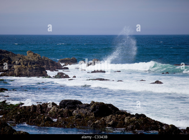 Pacific ocean surf crash on rocky shore - Stock Image