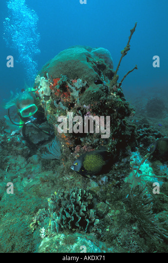 Republic of Panama underwater scuba diver beside coral covered rock caribbean side woman in lime green mask and - Stock Image