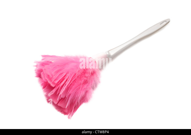 Pink feather duster on white background - Stock Image
