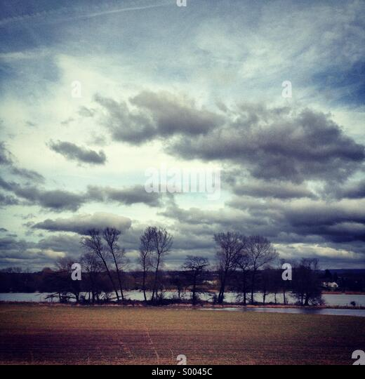 Storm clouds over a group of trees. - Stock-Bilder