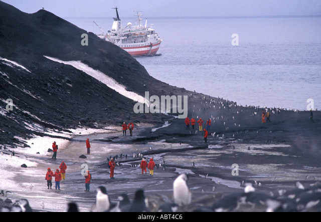 ANTARCTICA Deception Island Tourists among Chinstrap penguins - Stock Image