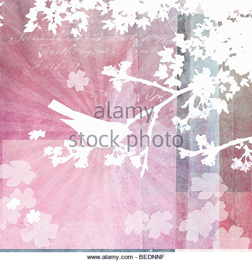 Bird sitting in tree with spring flowers - Stock Image