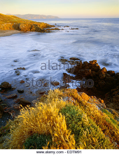 The west end of Santa Cruz Island Preserve The Nature Conservancy.  Santa Cruz Island, California. - Stock Image