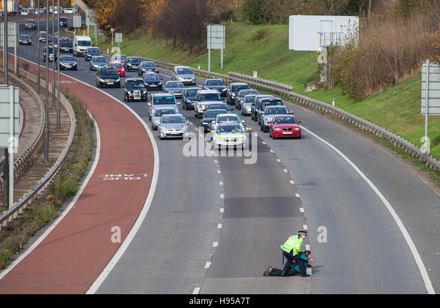 Heathrow, UK. 19th Nov, 2016. A protester against airport expansion at Heathrow blocks the main access route to - Stock Image