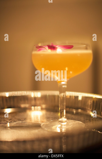 Cocktail with plumeria flower on silver tray, close up - Stock Image