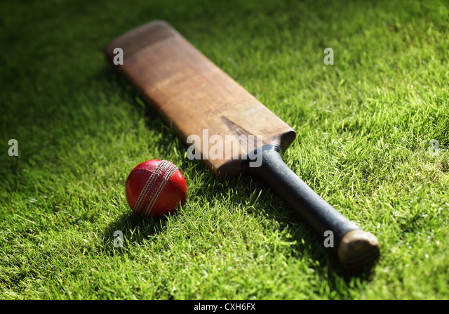 Cricket bat and ball - Stock Image