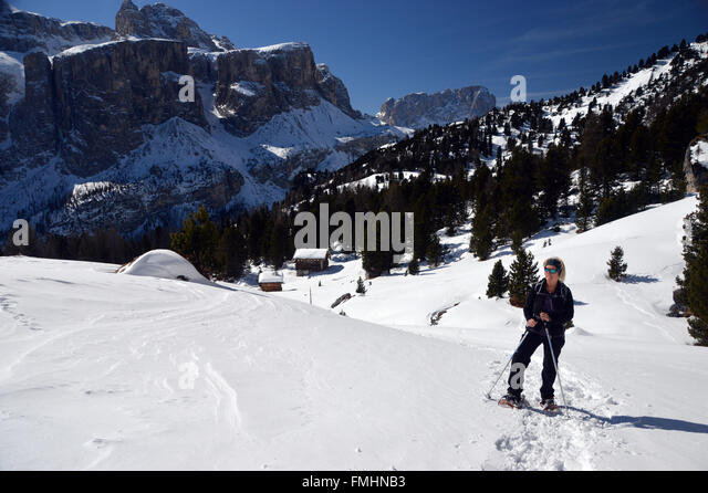 dolomite asian singles Tourism portal for alta badia - dolomites, italy, with lots of information about the  area, hotel directory, panoramic pictures, webcams, sport offers and pastime.