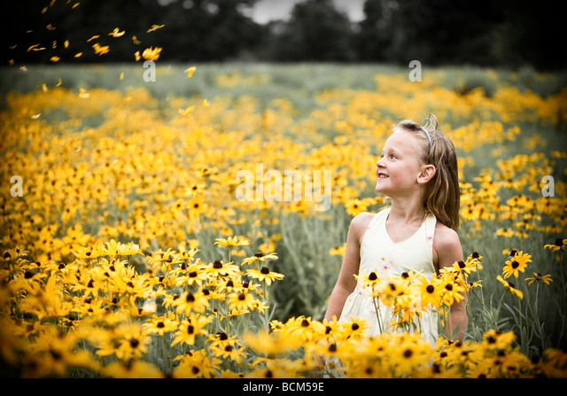Young girl in a field of yellow flowers - Stock Image