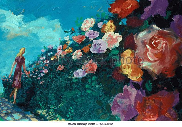 Rose Garden - Stock-Bilder