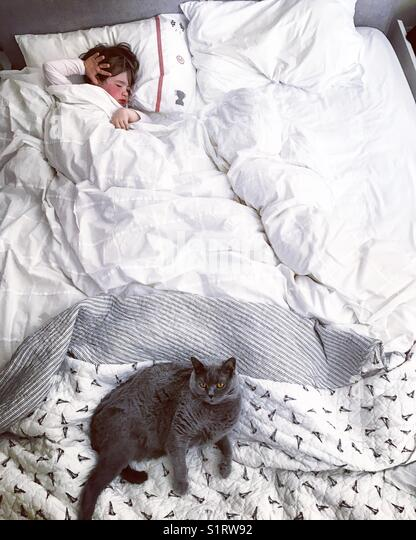 Boy sleeping with his cat - Stock Image