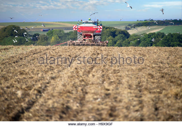 Rear View Of Tractor Pulling Drill Sowing Wheat Seed - Stock Image