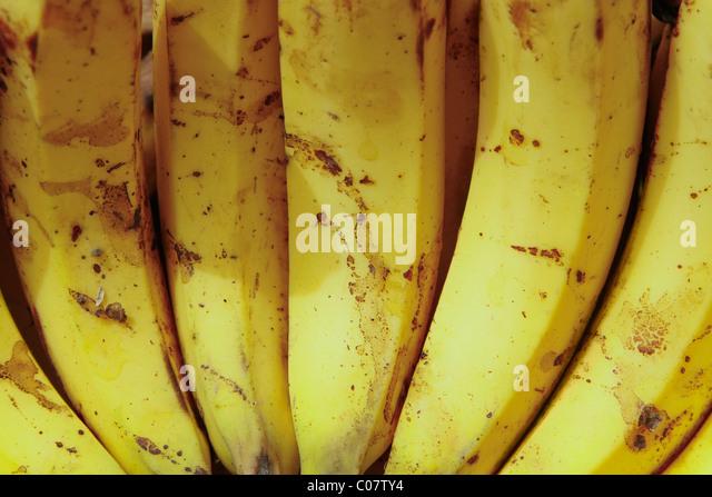 Close-up of bananas - Stock-Bilder