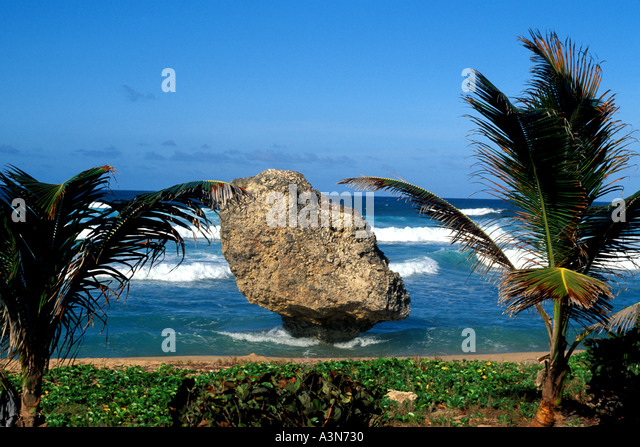 Barbados beach Atlantic Coast Bathsheba Area Large Rock Formation that is one of Barbados iconic national symbols - Stock Image