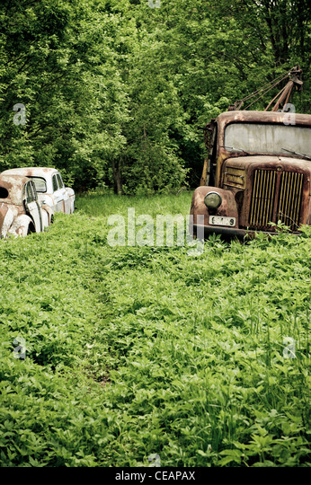 Discarded cars in nature - Stock Image