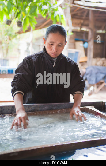 Woman making handmade paper in Luang Prabang, Laos, Indochina, Southeast Asia, Asia - Stock Image
