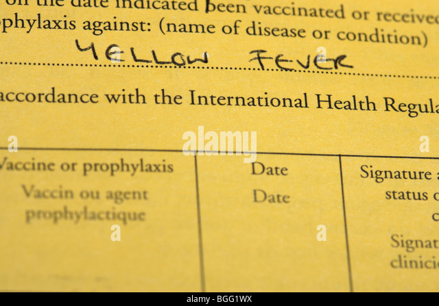 international certificate of vaccination or prophylaxis document for yellow fever vaccine - Stock Image