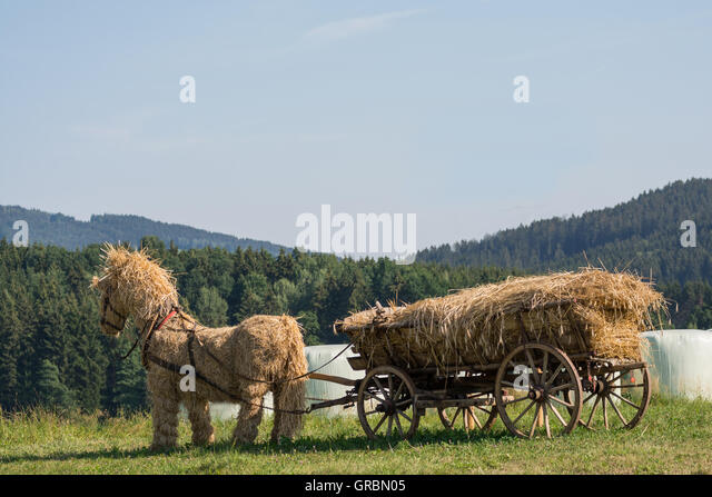 Original Straw Horse With Straw Filled Wooden Wagon In The Open Countryside - Stock Image