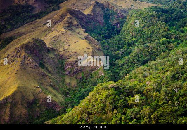 Landscape in Altos de Campana National Park, Panama province, Republic of Panama. - Stock-Bilder