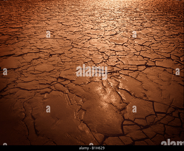 Cracked soil in drought - Stock Image