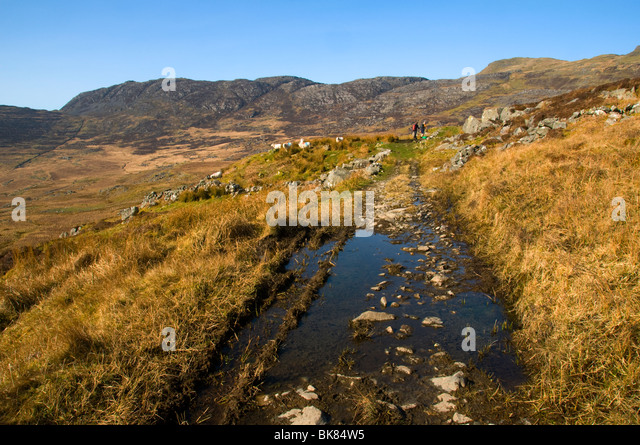 In the north of the Rhinog Mountains, Snowdonia, North Wales, UK - Stock Image