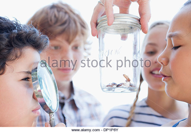 Kids looking at insects in jar with magnifying glass - Stock Image