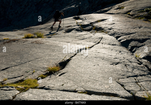 On the track to the Gertrude Saddle, near Milford Sound, Fjordland, South Island, New Zealand - Stock Image