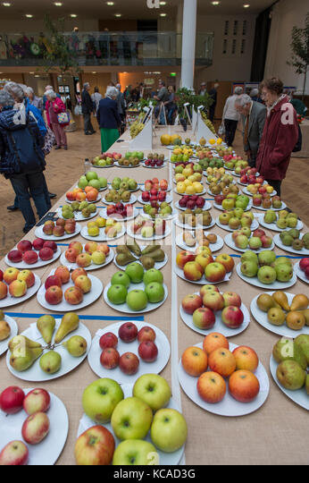 Lindley Hall, London, UK. 3 October 2017. Two-day RHS London Harvest Festival Show opens, celebrating Harvest this - Stock Image
