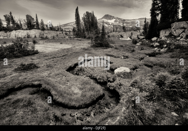 Small stream and meadow with Eagle Cap Mountain. Eagle Cap Wilderness, Oregon - Stock Image