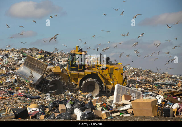 Trashmaster moving garbage in an active landfill cell at Shepard Waste Management Facility. - Stock Image