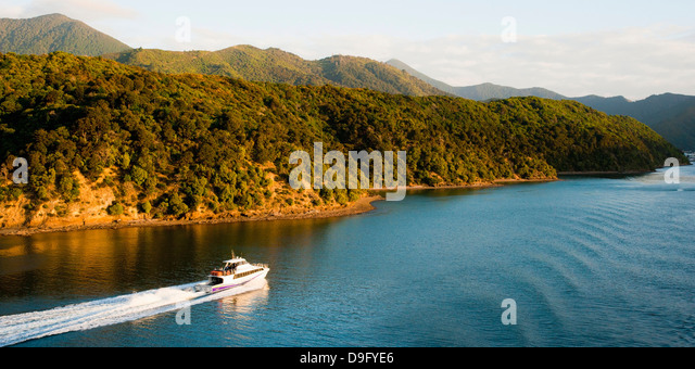 Speed boat in Queen Charlotte Sound, Picton, Marlborough Region, South Island, New Zealand - Stock Image